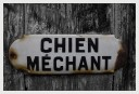 chienméchant1