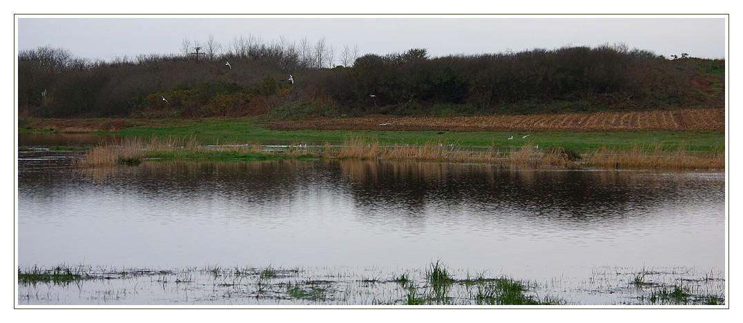 crue ruisseau de l'étang du pont roudouz 04