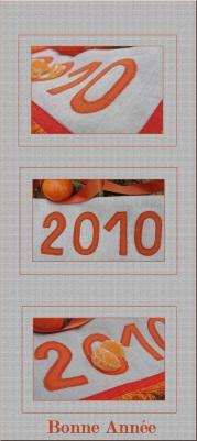 2010 orange clémentine-1