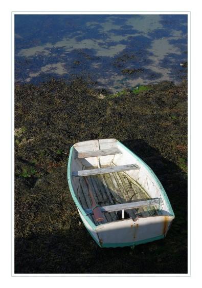 barque à Lilia