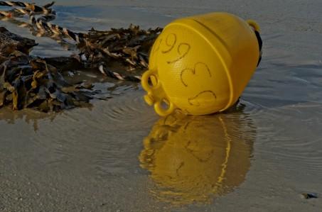 bouée d'amarage jaune, port de Koréjou, Plouguerneau, Finistère