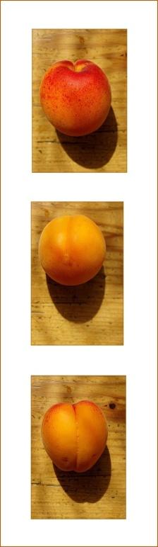 triptyque abricot entier