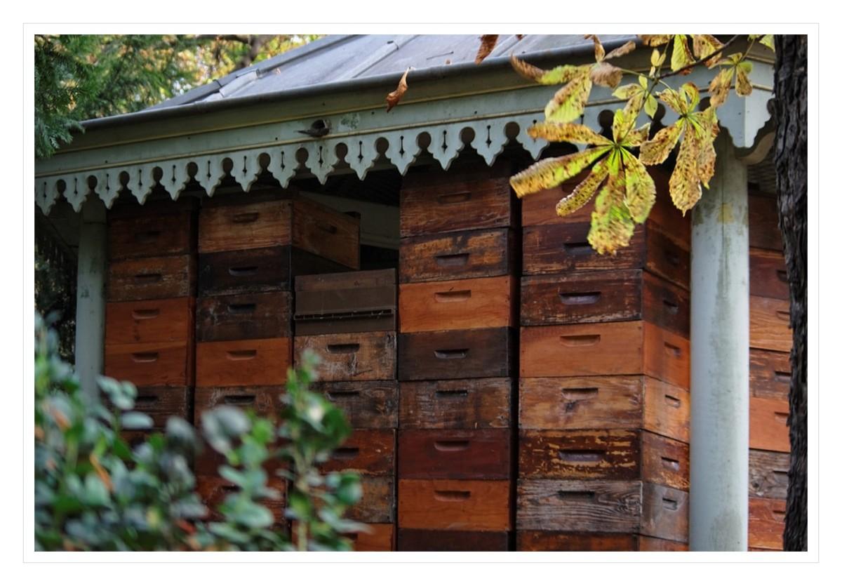 Le rucher du jardin du luxembourg la tribu d 39 anaximandre for Aller au jardin du luxembourg
