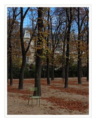 l'automne au jardin du luxembourg