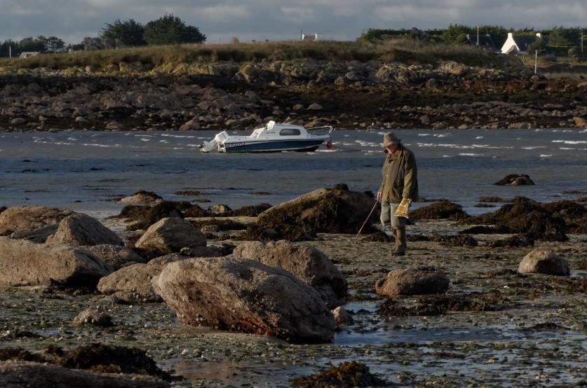 pêche à pied, pêche en bord de mer, Korejou, Plouguerneau, finistère