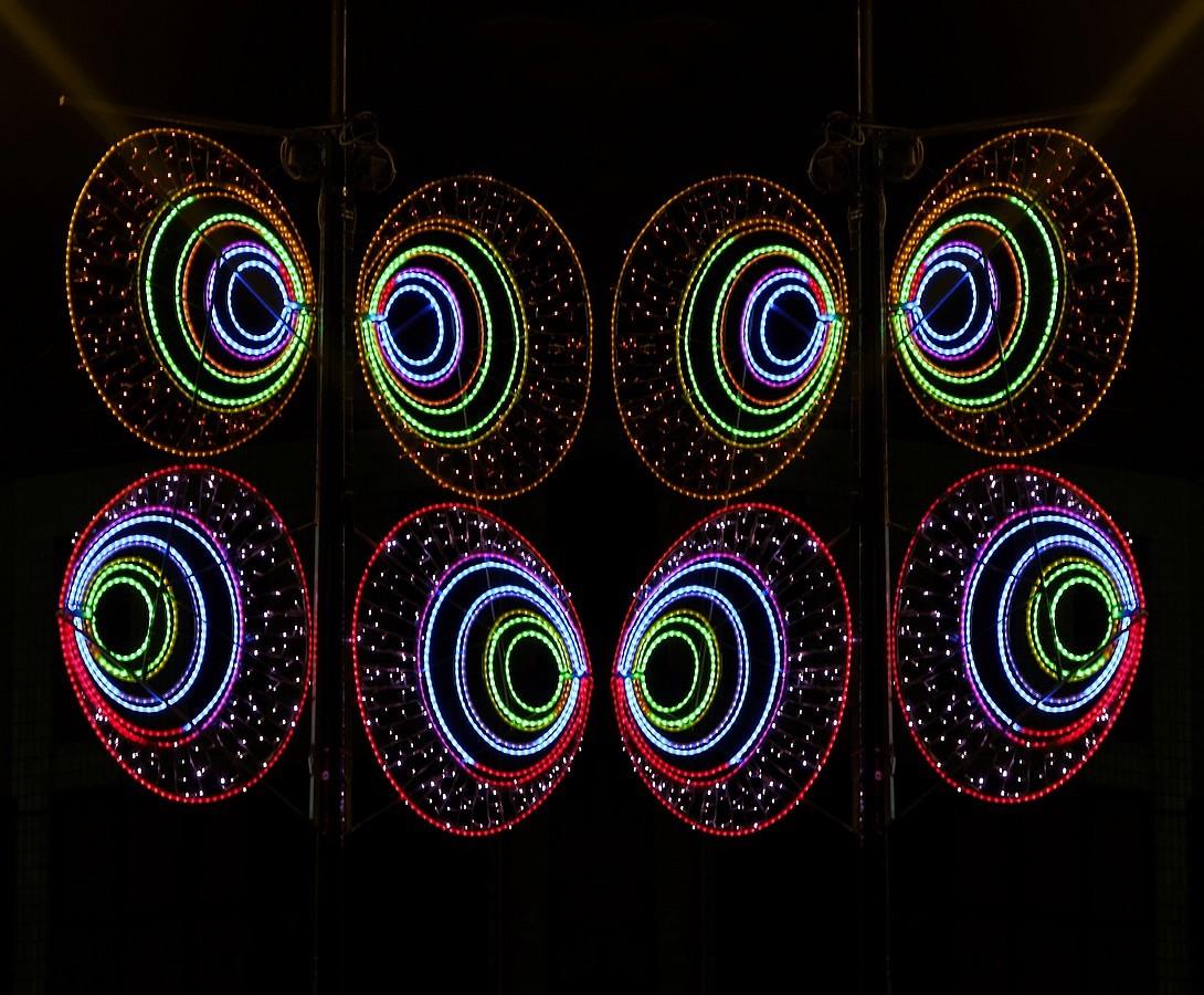 IMGP8051_DxO_DxOFP  oeil de chouette