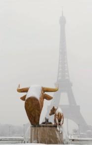 Tour Eiffel neige buffle veau d'or