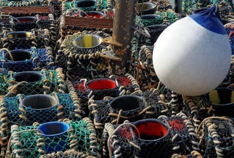 casiers à crustacés Roscoff