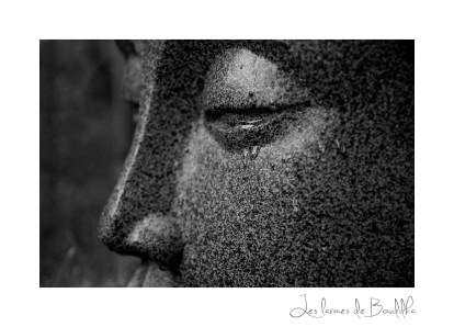 les larmes de Bouddha