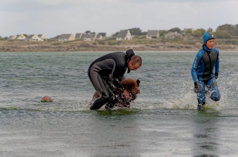 sauvetage en mer, , fête de la mer à Guissény juillet 2013, SNSM