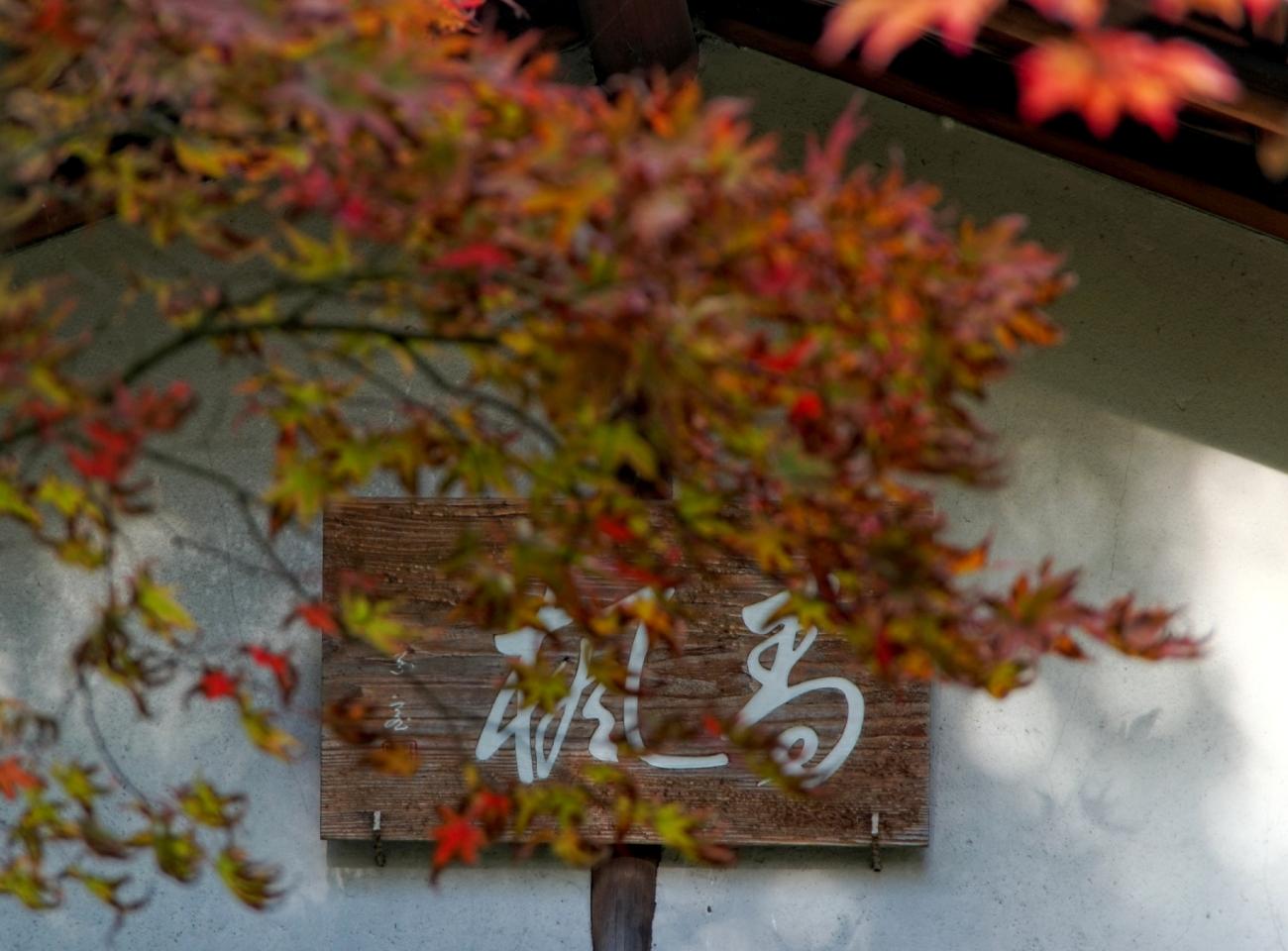 Paris, Jardin Albert Kahn, jardin japonais, rouge, automne,