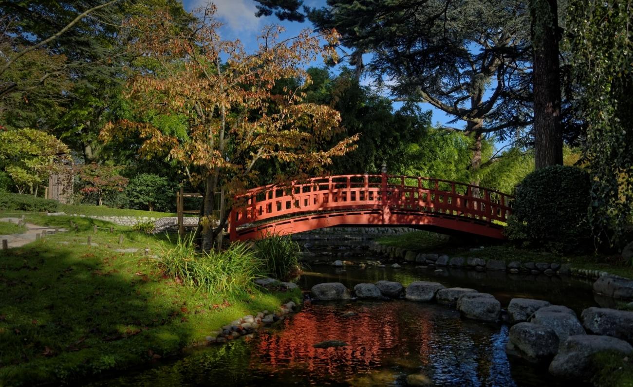 Pont japonais, jardin japonais Albert Kahn, Boulogne, reflets,