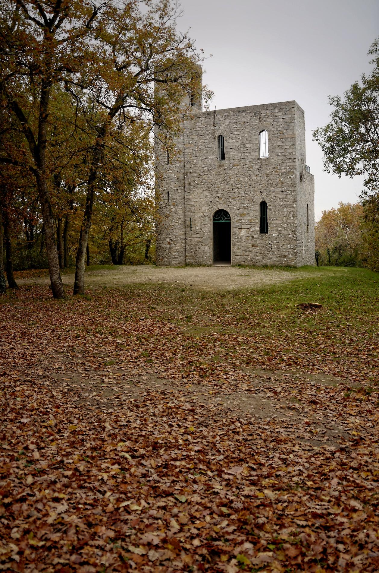 Forêt des Grands Avaux, Tour Buisson, Champceuil, forêt, couleurs d'automne