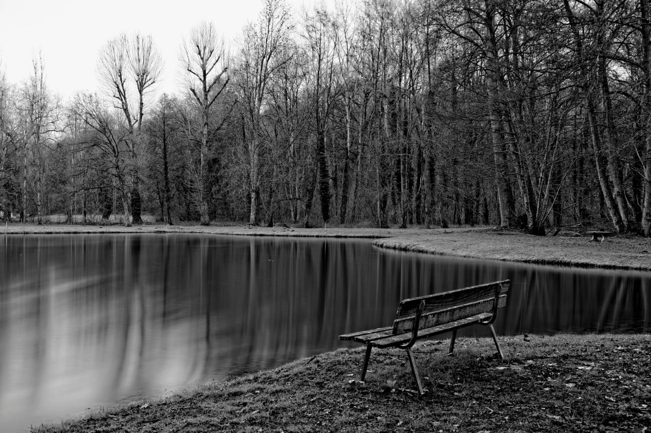pose longue, bois, étang, nature, banc, parc château de Valnay, noir et blanc, photo