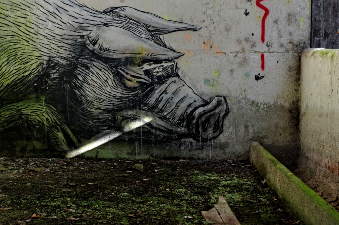 ROA, cochon, tête, abattoir à cochons