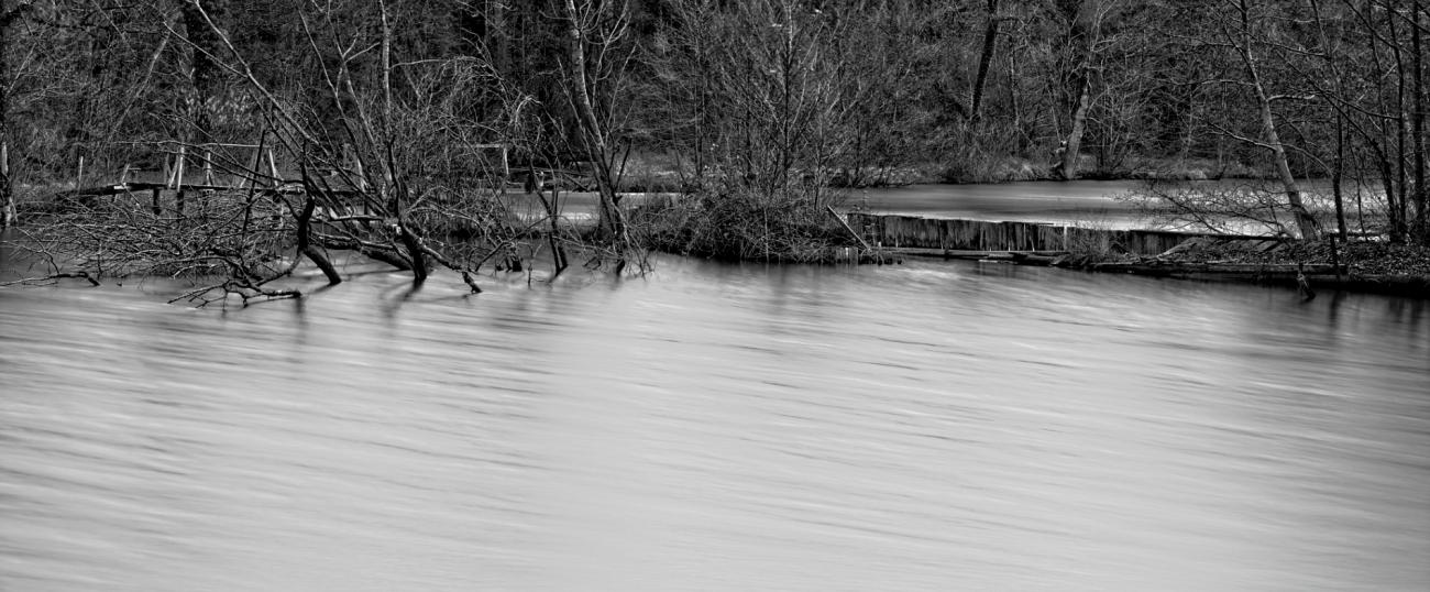 étangs de Vert-le-Petit, pose longue, noir et blanc, bois, étang, ponton, essonne