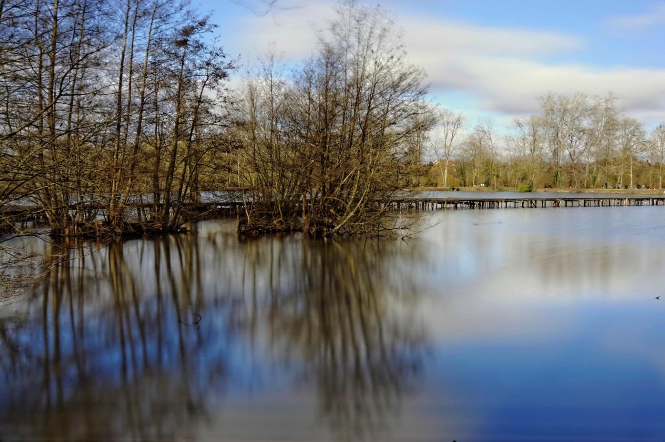 étangs de Vert le Petit, étant, pose longue,ponton,  photo, essonne