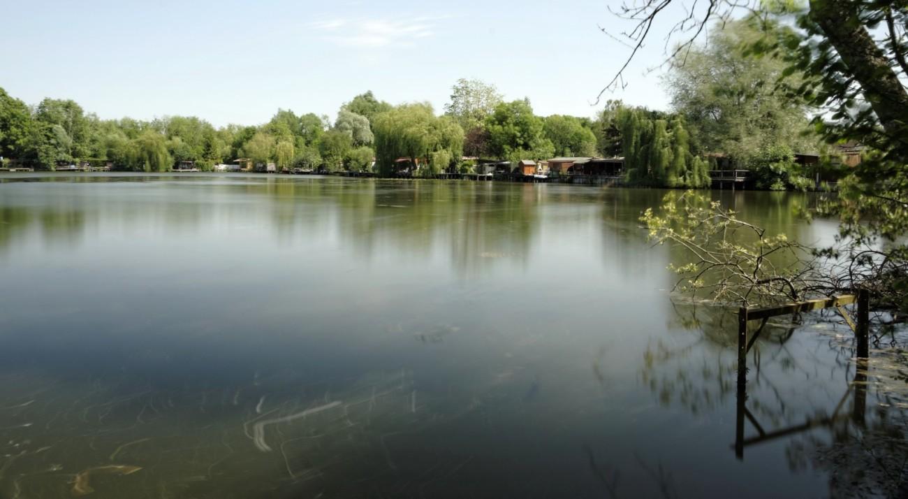 étangs de Baulne, pose longue, essonne,