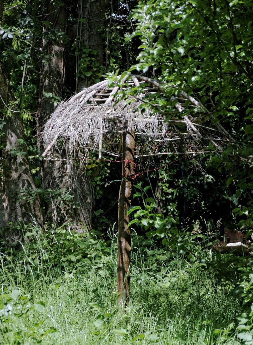 parasol, étangs de Baulne, essonne