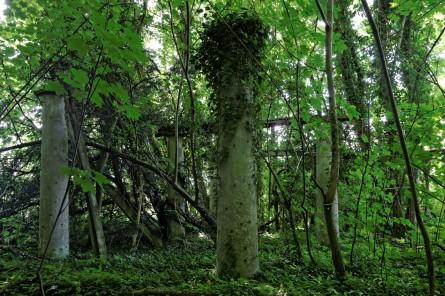 pergola domaine des trois colonnes