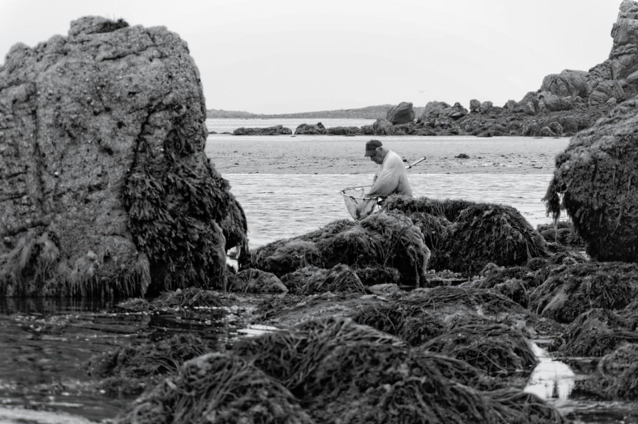 phare de l'île vierge, brume, Lilia, finistère, bretagne, noir et blanc, pêche à pied, pêche à la crevette