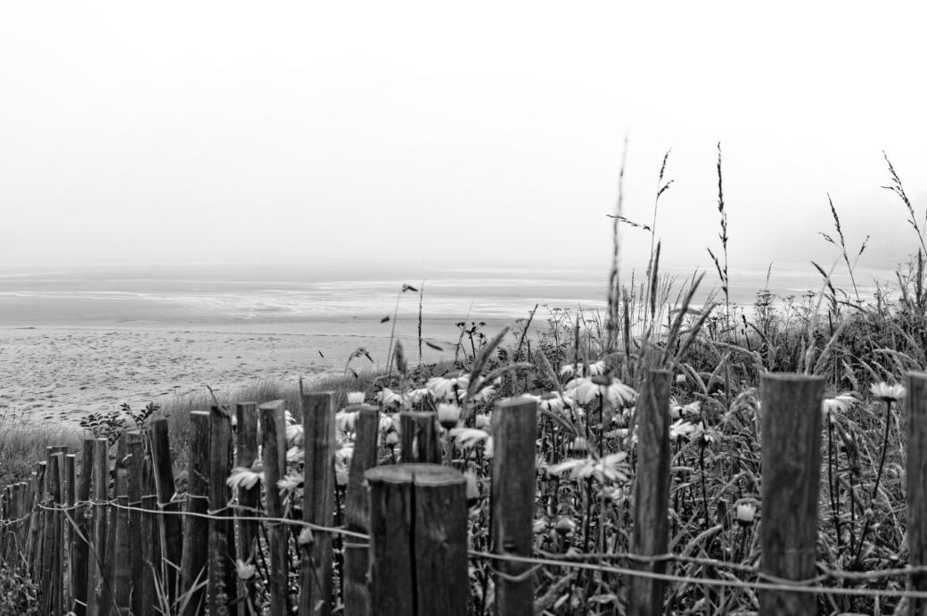 baie de Guissény, brume, finistère, bretagne