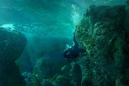 plongeur aquaruim Océanopolis Brest