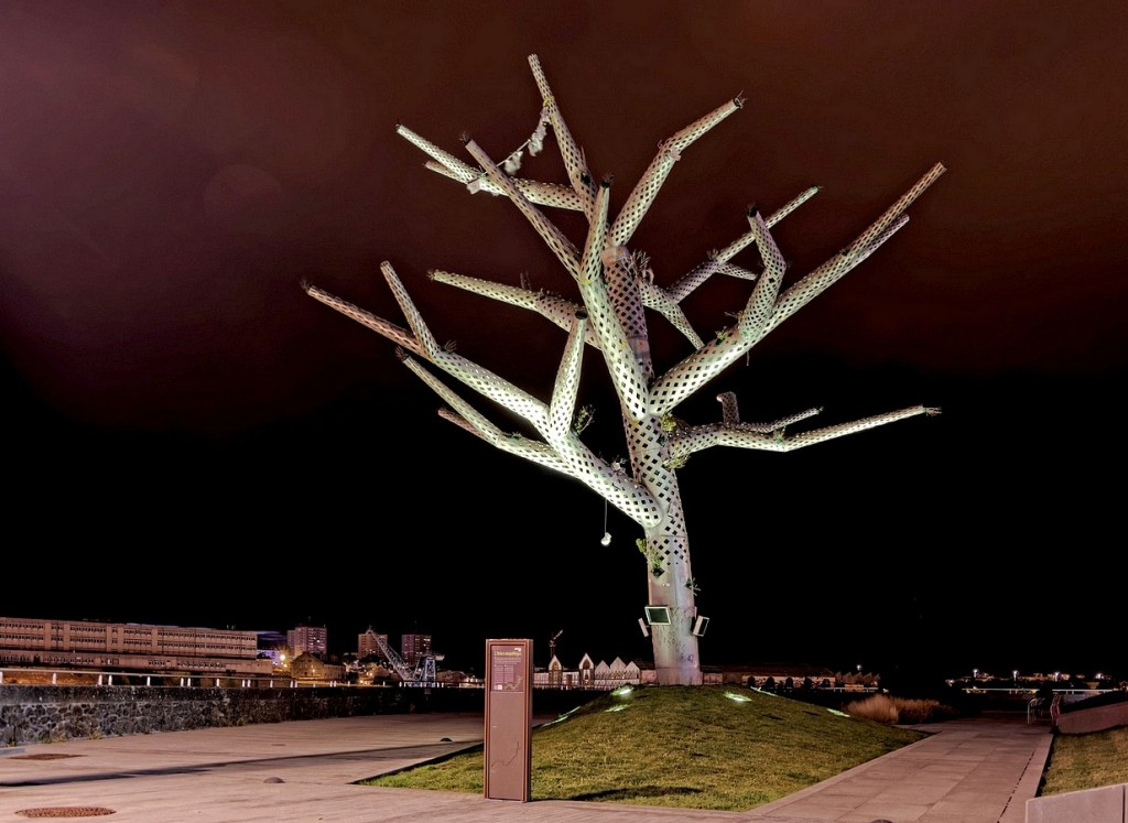 l'arbre emphatique de nuit Brest (1)