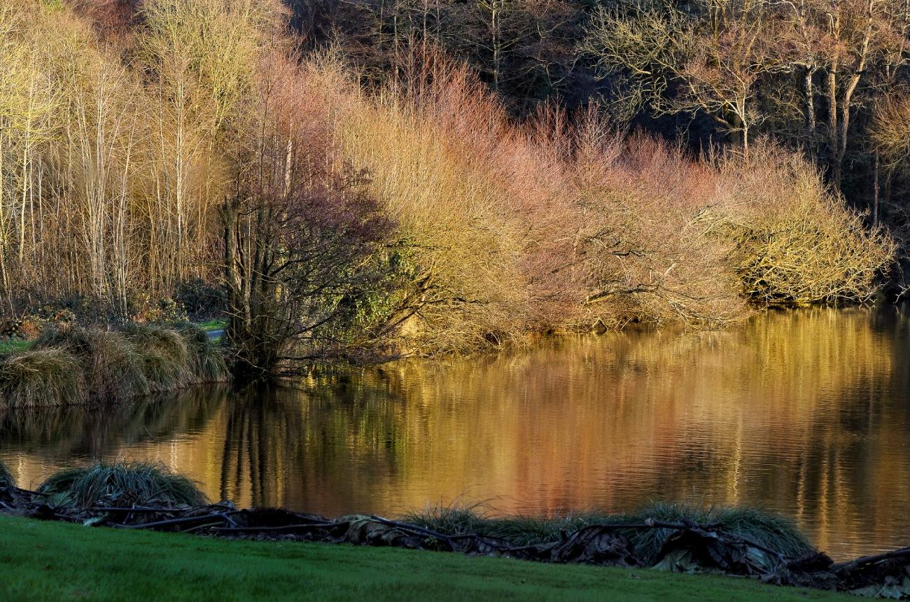 plan d'eau, coucher de soleil, château de Keruzoret, Plouvorn, bretagne, finistère