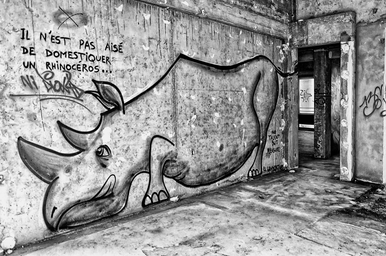 tags, rhinocéros, Le Conquet, ancien restaurant le Sainte-Barbe, urbex, exploration urbaine