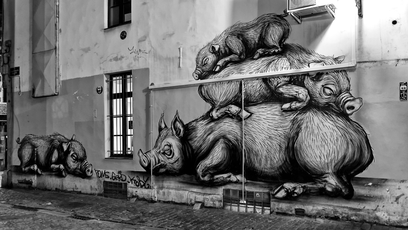 street art, Roa, cochons, dessins, Belgique, Bruxelles