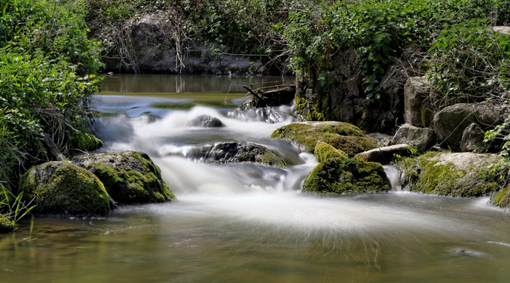 le Guillec, ruisseau, pose longue, Plougoulm, finistère, bretagne,