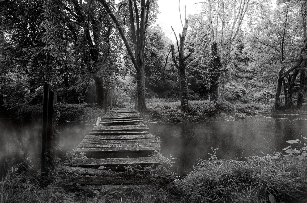pont de bois, brume, abandonned, urbex, étang, noir et blanc,