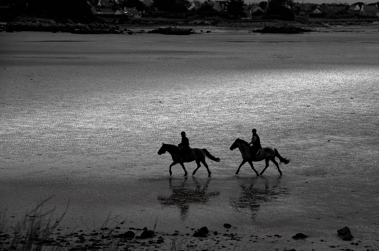 Porz Olier, Guissény, finistère, bretagne, noir et blanc, chevaux, plage, balade