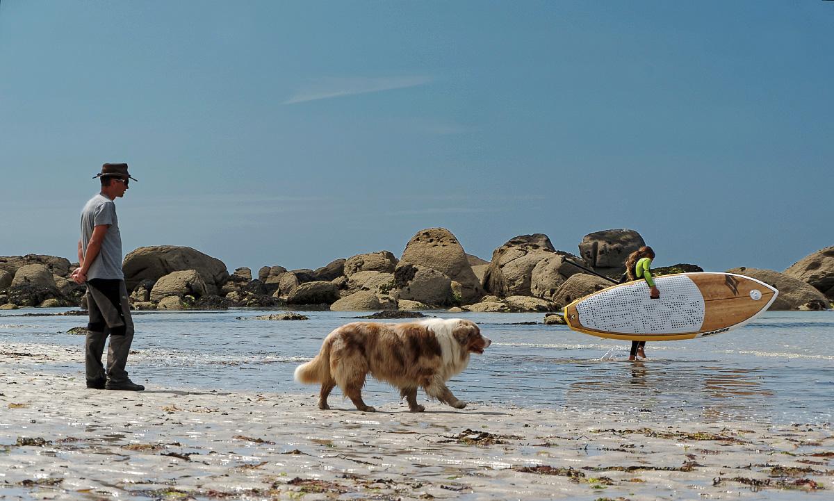 kite-paddle, plage, rochers, Ménéham, chien, finistère, bretagne