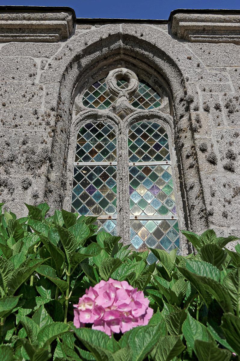 hortensias, chapelle Saint-Egarec, vitraux St-Egarec, Kerlouan, finistère, bretagne
