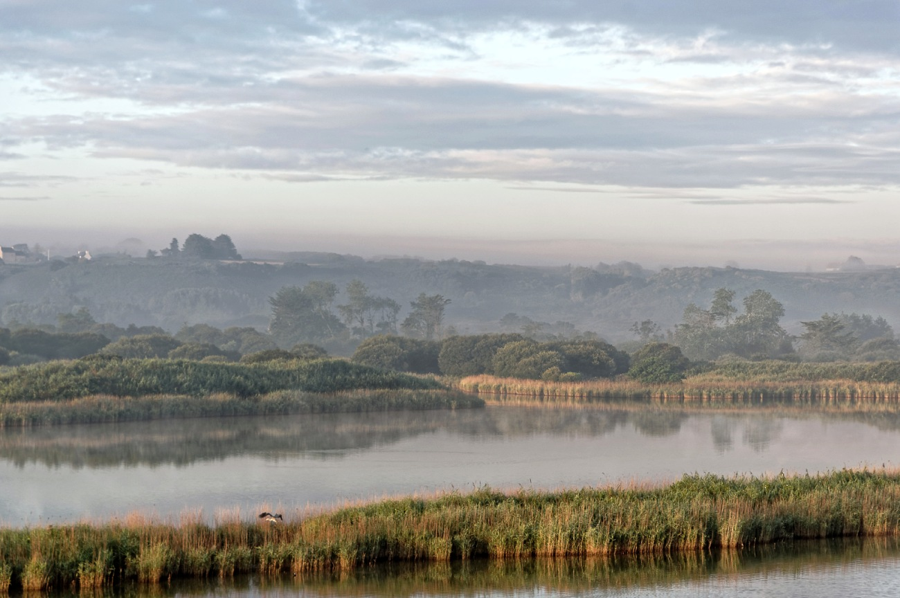 étang du Curnic, Curnic, Guissény, brume matinale, finistère, bretagne