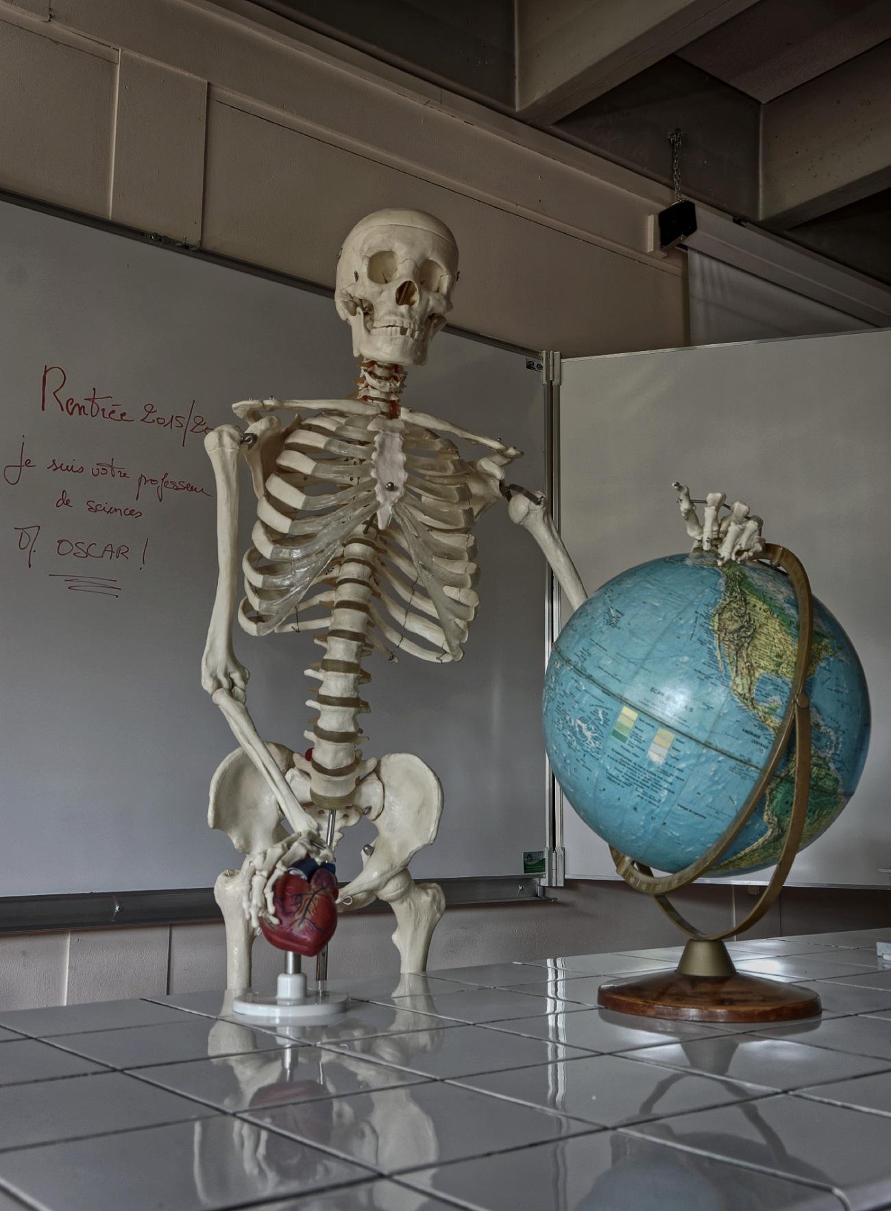 oscar maître du monde de Prévert sinistre 2 , squetlette, rentrée scolaire, rentrée 2015