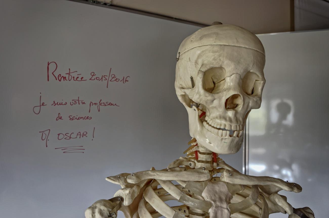 oscar maître du monde de Prévert sinistre 3, squetlette, rentrée scolaire, rentrée 2015
