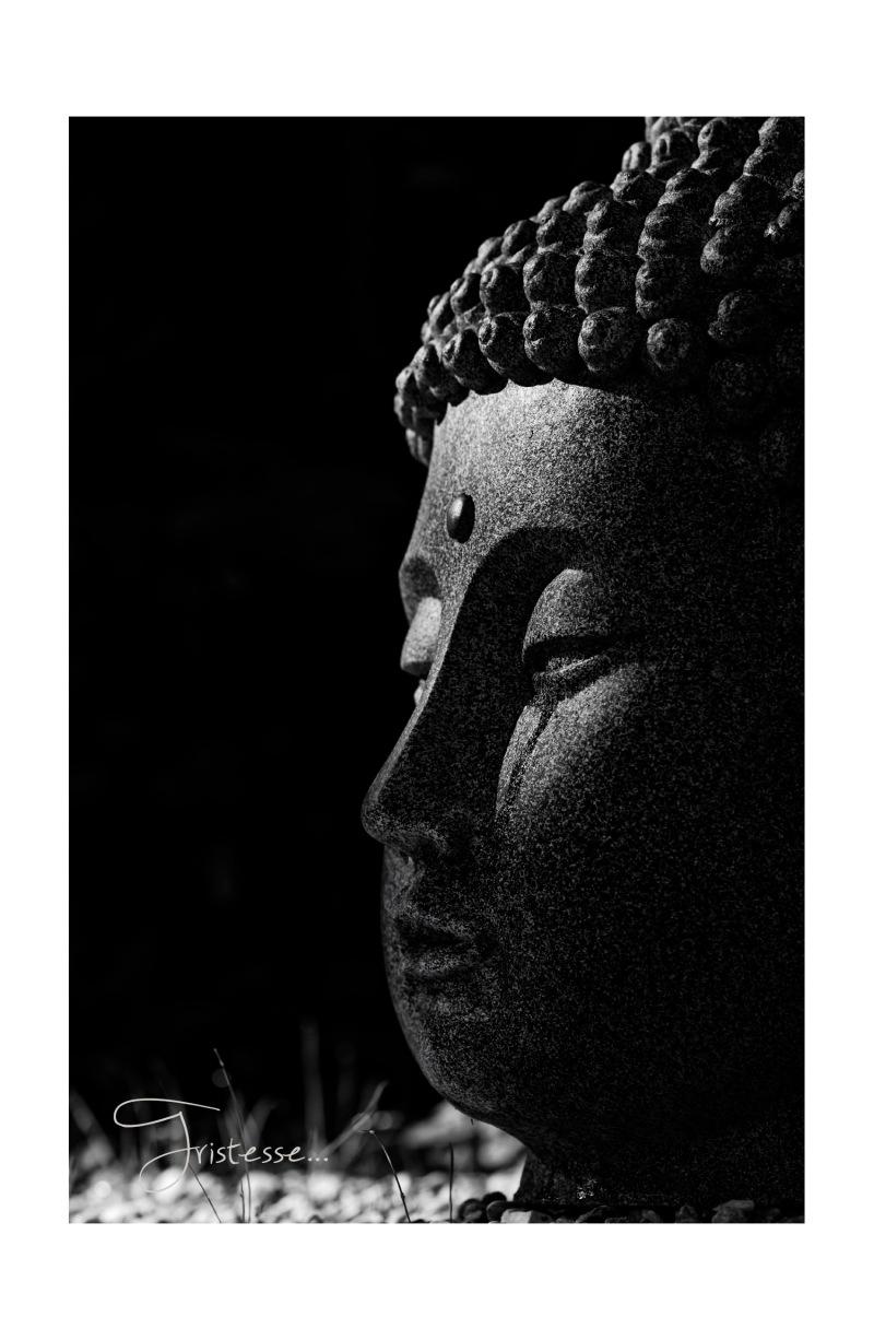 bouddha tristesse 2, tête de Bouddha, larme, chagrin, noir et blanc,
