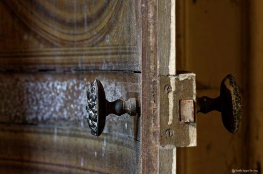 porte entre ouverte urbex Verdure