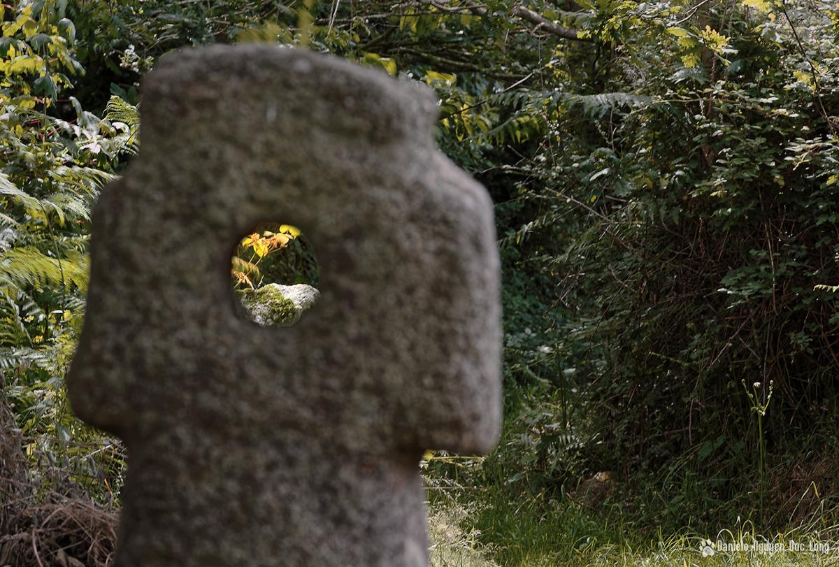 prémices d'automne à Croas Toull, Guissény, finistère, bretagne