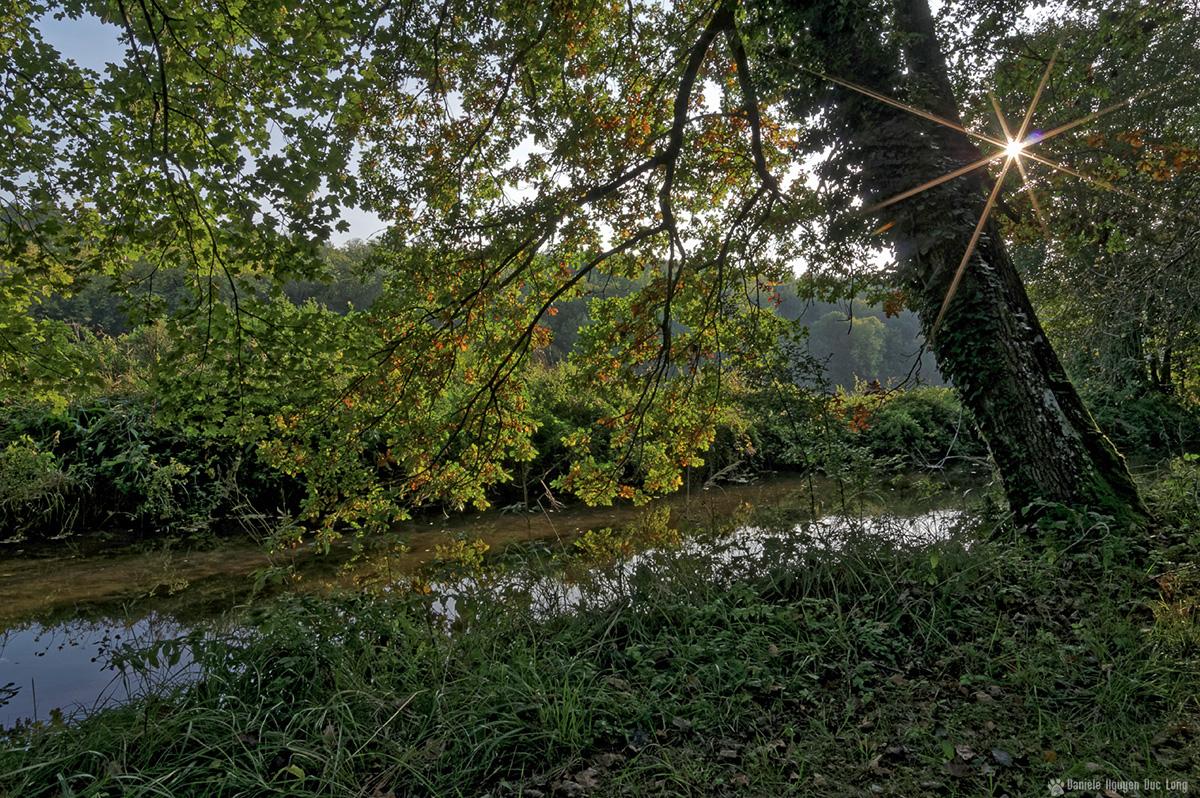 soleil étoile et ruisseau couleurs d'automne bois