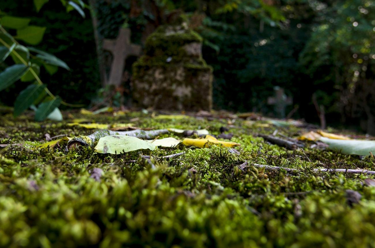 tombe abandonnée cimetiière, urbex, Toussaint,