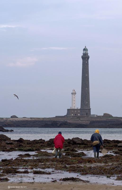 couple de pêcheurs à pied au phare de l'ile Vierge, pêche à pied, phare de l'ile Vierge, Lilia, Plouguernaud, Bretagne, Finistère