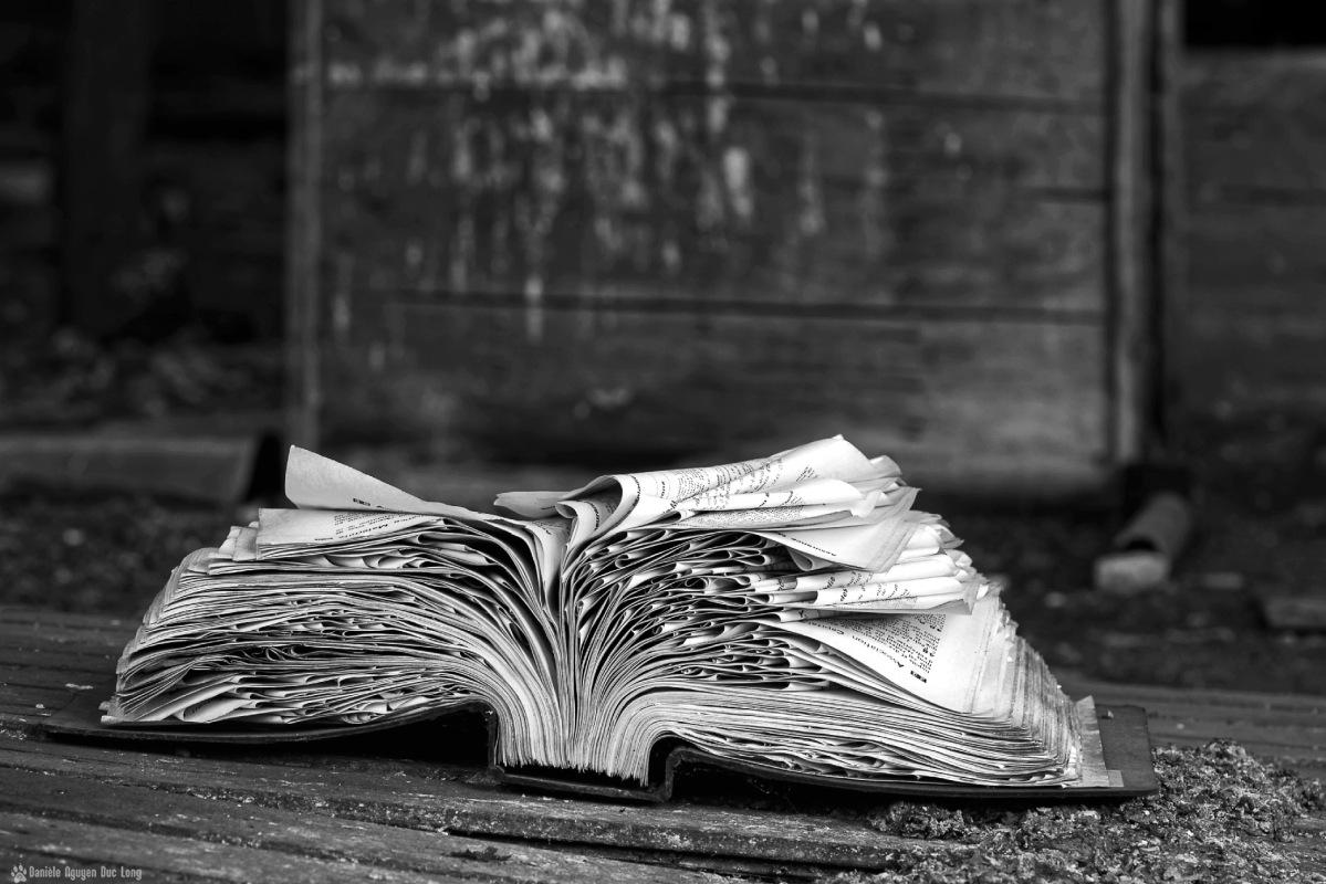 Urbex l'usine du souvenir livre au sol 2