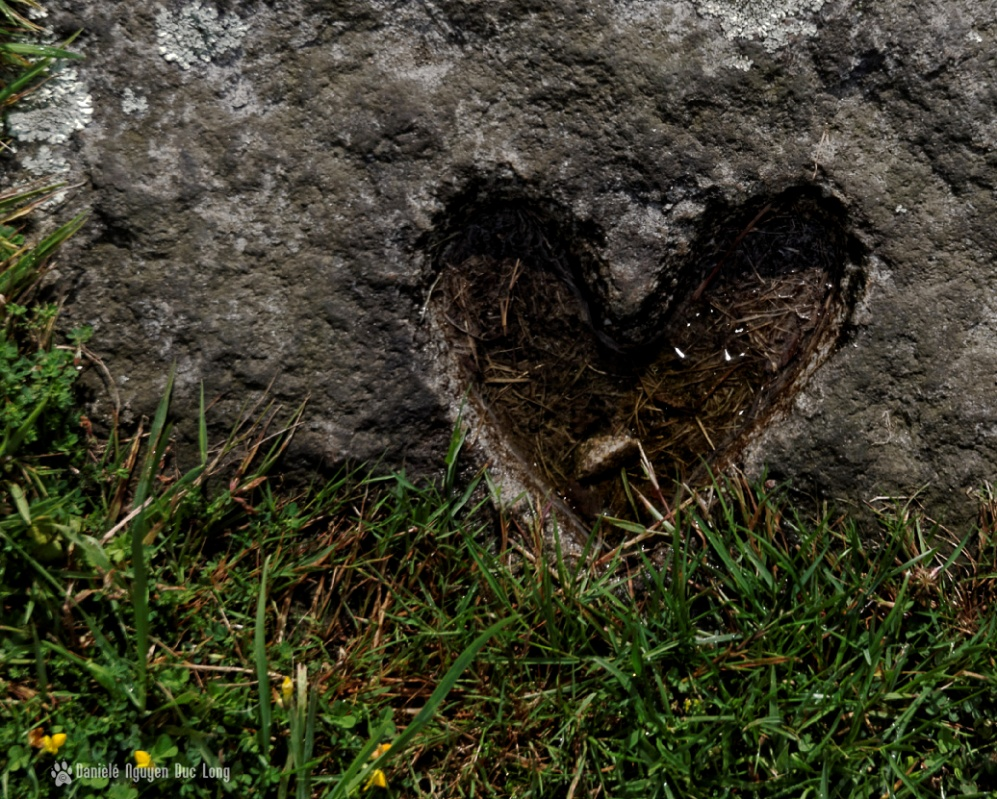 coeur pierre chapelle Guicquelleau, sépulture extérieure chapelle Guicquelleau, Folgoet, Bretagne, Finistère