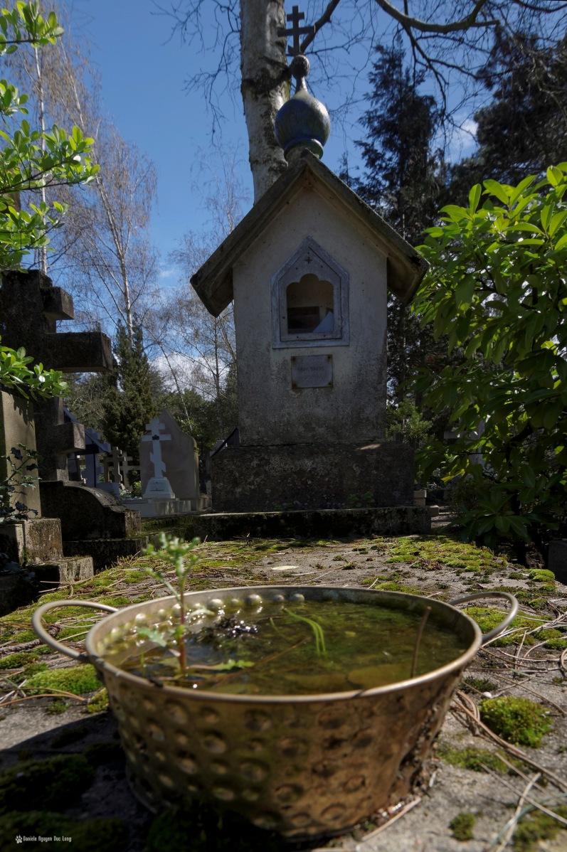 cimetière russe Ste-Geneviève-des-Bois bac fleur pleind d'eau sur tombe
