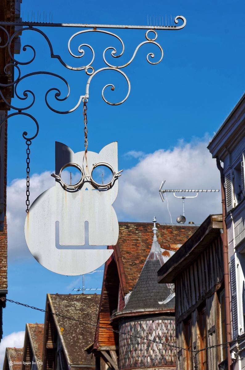 enseigne chat à lunettes Troyes