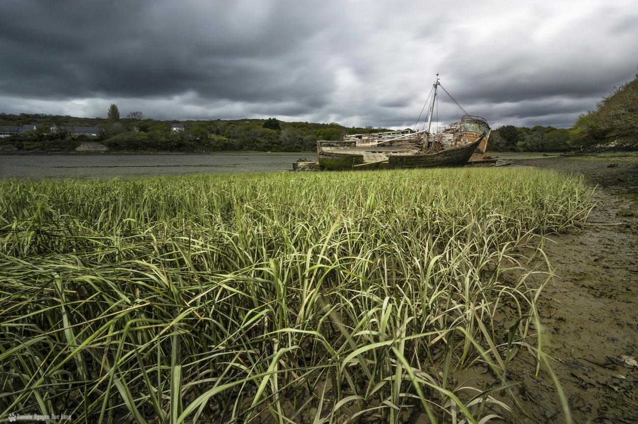 pose longue épaves l'auberlac'h algues, anse de St-Guénolé, les épaves de St-Guénolé, les épaves de Lauberlac'h,